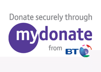 Bt Donate Button