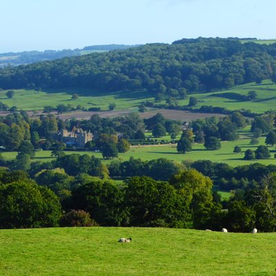 Sudeley Castle Hills Web