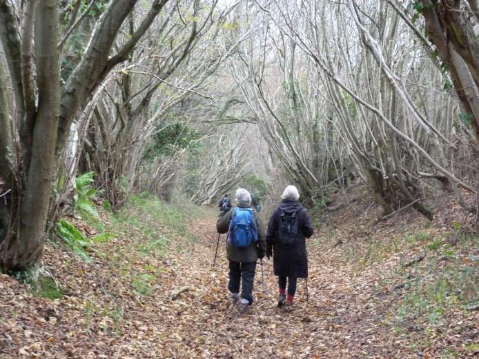 Walking the Cotswold Way with Cotswold Voluntary Wardens